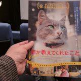 映画「猫が教えてくれたこと」試写会とトークショーに参加しました