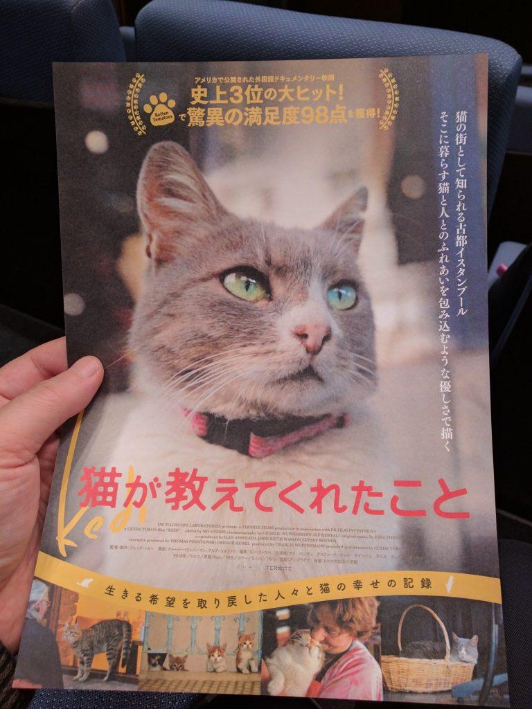 映画「猫が教えてくれたこと」フライヤー