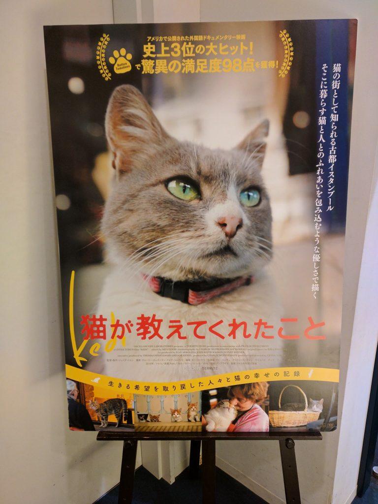 映画「猫が教えてくれたこと」試写会&トークショー