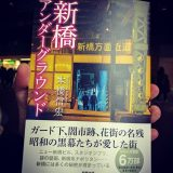 読了。「新橋アンダーグラウンド」(著者:本橋信宏)新橋を散歩してみました