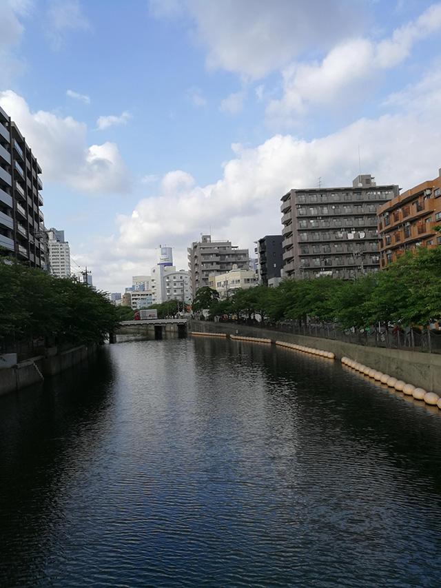大岡川 2019年5月19日