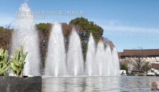 【動画】上野恩賜公園 竹の台広場(噴水広場)2020年12月26日